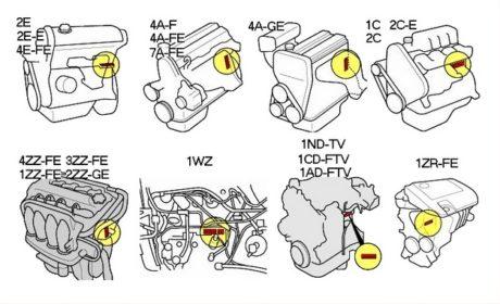 Месторасположение номера на двигателе Тойота Корола